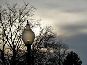 2:19:13 lamp flow