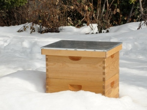 Bee hive in the snow.