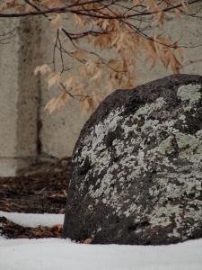 2:8:13 lichen rock