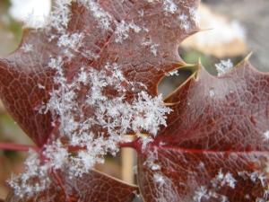 Great big snowflake on February 9, 2013.
