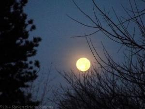 1:16:13 moonset sig