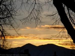 2:24:14 sunset trees sig