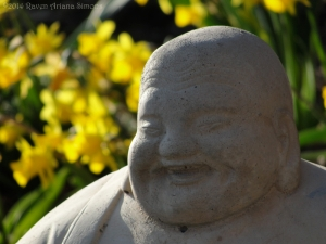 3:24:14 face of buddha sig