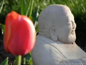 4:14:14 buddha tulip 1 sig