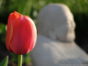 4:14:14 buddha tulip sig