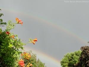 7:20:14 double rainbow sig
