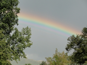 8:21:14 rainbow 1 sig