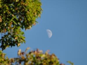 9:2:14 hazel moon sig