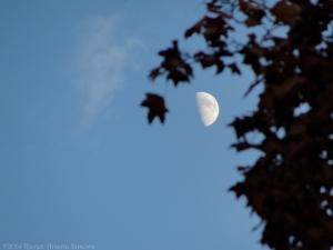 10:31:14 moon 1 sig