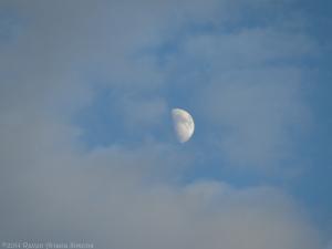 10:31:14 moon clouds sig
