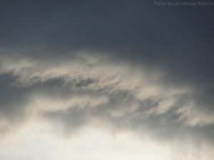 10:31:14 raining clouds sig
