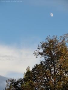 October 24, 2012 sig