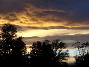 11:1:14 sunset 2 sig