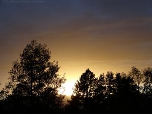 11:1:14 sunset sig