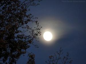11:4:14 moon sig