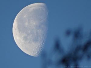 2:10:15 waning moon sig