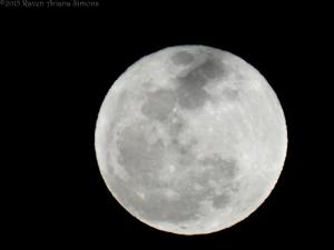 3:5:15 moon detail sig