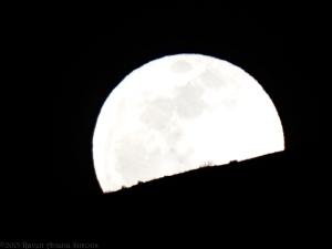 3:5:15 rising moon sig