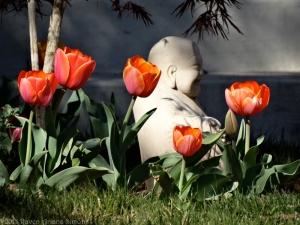 3:30:15 tulip buddha sig